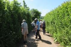 Plant Suvey, Piles Mill June 2021: Martina Slater