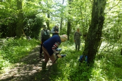 Great Wood Plant Survey Summer 2021: Martina Slater