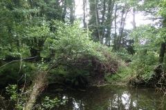 Beaver's lodge: Martina Slater