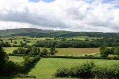 Ian Hart:  towards Dunkery