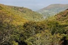 Bossington Hill from Cloutsham@lan Hart