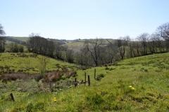Sherdon Farm view: lan Hart