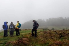 Martina Slater: Valley of Rocks ENHS outing  2019