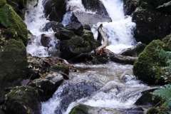 Waterfall at Horner Water@lan Hart
