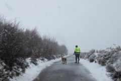 Snowy dog walk with David Slater: Martina Slater