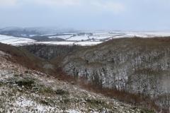 Hawkcombe tress in the snow: Martina Slater
