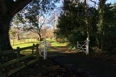 View behind Holnicote House, near Selworthy : Brian Culcheth